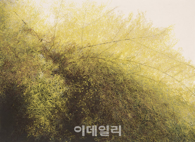 [e갤러리] 실타래 몸부림처럼 봄이 온다…홍진희 '봄날 아침'
