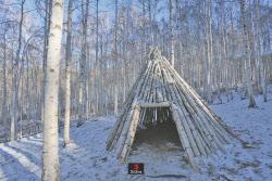겨울과 엔딩하기 좋은 `속삭이는 자작나무 숲` 강원도 인제여행