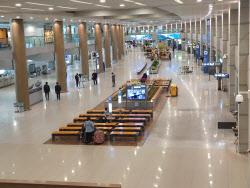 코로나에 방한 외국인 절반 '뚝'…해외여행도 60% 줄어