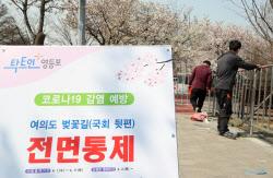 [포토]코로나19 확산방지를 위해 여의도 벚꽃길 전면통제 시작