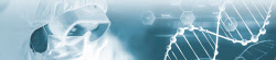 [박일경의 바이오 돋보기]GC녹십자 vs 셀트리온…불붙은 '코로나 치료제' 개발 경쟁