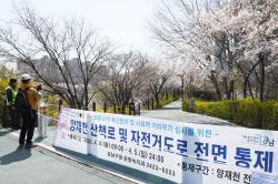 [포토]봄 향기 가득한 양재천, 사회적 거리두기로 전면통제
