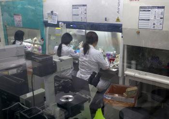 코로나19 마우스 연구현장 간담회