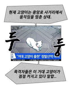 [김정유의 웹툰파헤치기] 신선한 고양이 세계관… 네이버웹툰 '집사레인저'