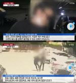 """""""경비원이 차 밀며 돌진""""…사과 대신 변명만 늘어놓은 입주민"""