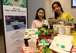 [포토] 친환경 식물 재배 키트