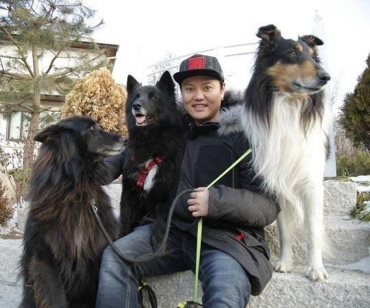 김민교 반려견에 물린 80대, 결국 사망…어떤 개길래