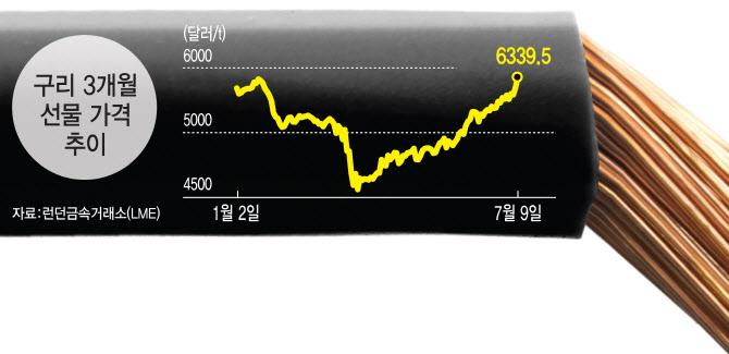[富를 키우는 투자지표]1년2개월만에 최고치 찍은 `닥터 쿠퍼`..더 오를까