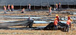 한국타이어, 충남 금산지역 수해복구 봉사활동 진행
