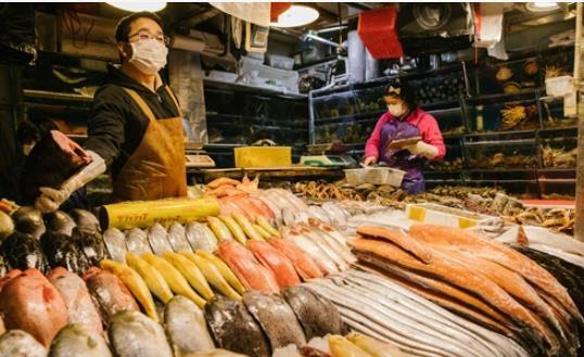 중국, 러시아산 냉동 오징어 포장에서 코로나19 바이러스 검출