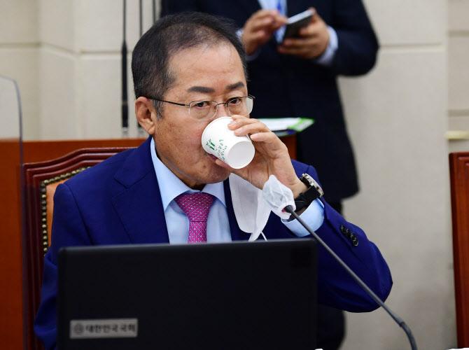 """""""국정경험 25년인 나를.."""" 홍준표, 이재명 비판에 격앙"""