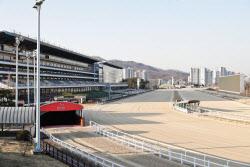 [경마이야기]해외는 디지털·비대면 '포스트 코로나' 준비…한국은?