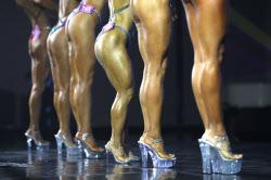 '힐 신고 뽐내는 다리근육'