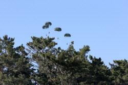 [포토] 낙하산 타고 내리는 해병대원