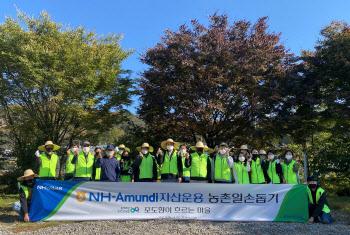NH아문디운용, 가평 자매결연 마을 일손돕기 진행