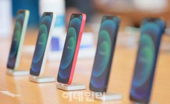 '아이폰12' 잘나가면 삼성이 웃는 이유
