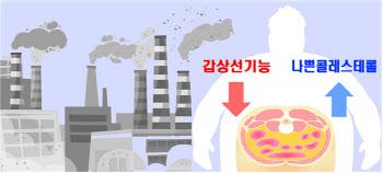 배 나오고 비만한 사람, 대기오염에 더 위험하다