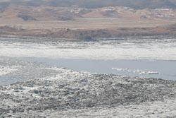 [포토]임진강에 쌓인 얼음