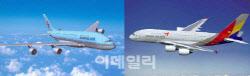 대한항공-아시아나만 운행하는 국제노선 7곳…합병 악재되나