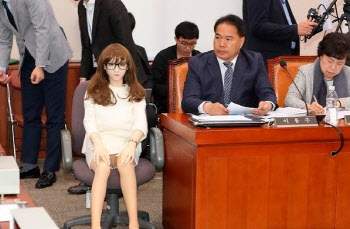 '유사 성매매' 여전한데…'리얼돌 수입 허용' 논란 재점화