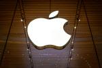 애플카 대신 비트코인?…애플 암호화폐 진출 가능성에 시장 후끈