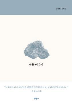 [200자 책꽂이] 산돌 키우기 외