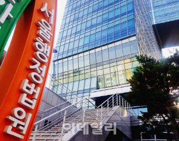 """법원 """"사내 동호회서 스노클링하다 사망…업무상 재해 아냐"""""""
