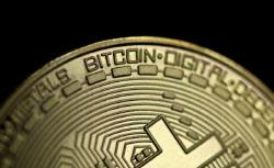 [속보]비트코인 5만달러 붕괴…하루만에 10% 추락