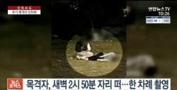 """""""한강 실종 당일, 故손정민 목격자 2명 추가 등장"""""""