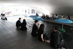 [포토]다리 밑에서 더위 식히는 시민들
