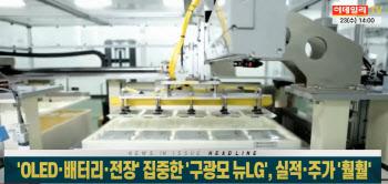 `OLED·배터리·전장` 집중한 `구광모 뉴LG`, 역대급 실적 낸다