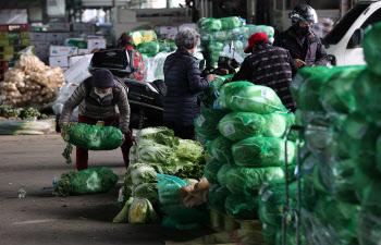 """도매시장 출하하는 6만7천여 농민들 """"시장도매인 도입 반대"""""""