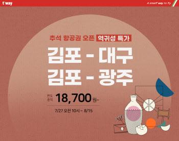 """티웨이, 추석 연휴 김포~대구·광주 노선 신설…""""역귀성 특가"""""""