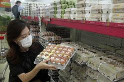 [포토] 계란값 고공행진 지속