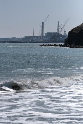 日, 후쿠시마 원전 오염수에서 넙치·광어 사육 실험