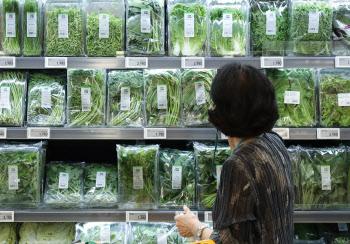 폭염에 채소가격 급등세…2%대 고물가 더 끌어올리나