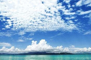 하늘의 구름이 솜사탕이 아닐까 [물에 관한 알쓸신잡]