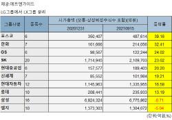 '벌크업' 포스코그룹…올해 10대그룹중 시총 증가율 1위