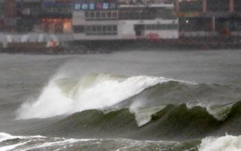 [내일날씨]전국 흐리고 대부분 지역 비…남부 해안가 높은 파도