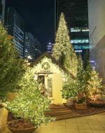 '벌써 크리스마스'…현대百 위드코로나 앞당겨 연말 분위기