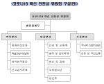 백신 불안감↓ 위해 '백신 안전성 위원회', '분야별 전문가 자문팀' 신설