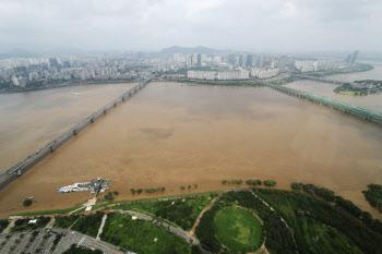 흙탕물처럼 변한 한강